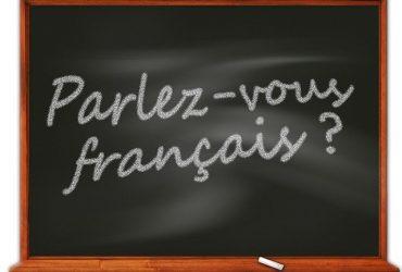 A la recherche d'un prof de Français pour des cours particuliers.
